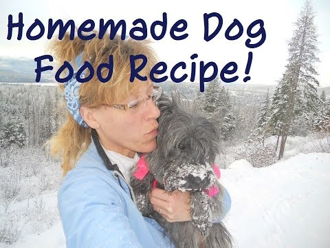 Homemade Dog Food.~ EASY, HEALTHY and CHEAP!