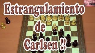 Magnus Carlsen estrangula a su enemigo. Ajedrez