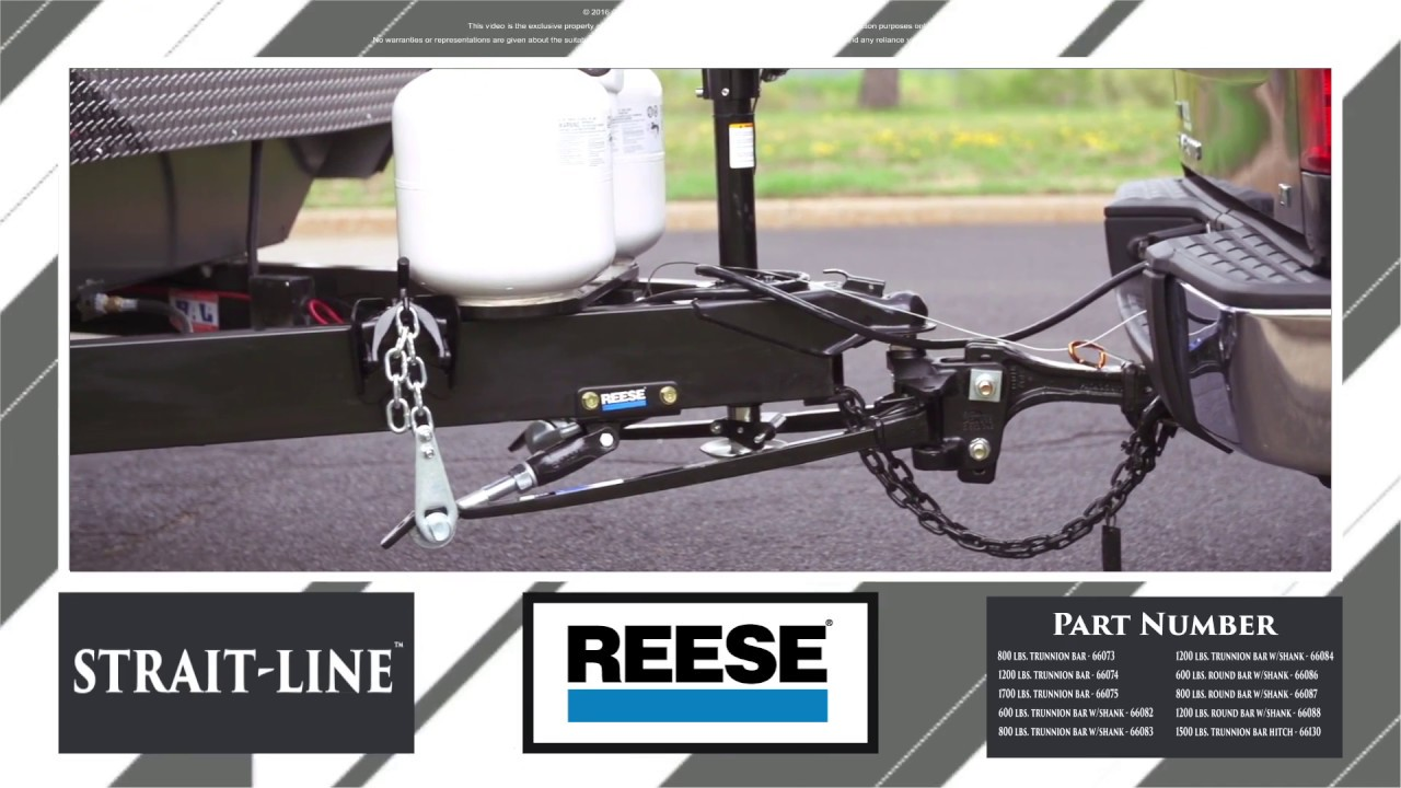 REESE® Strait-Line® Dual Cam High-Performance Weight ...