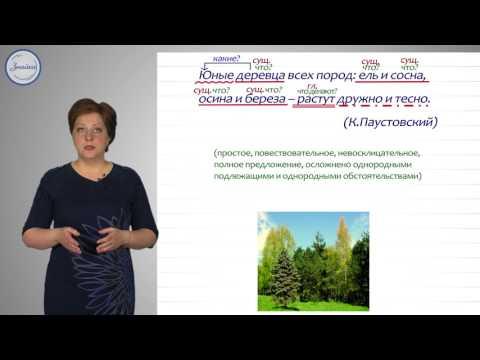 Русский язык 8 класс. Синтаксический и пунктуационный разбор простых предложений