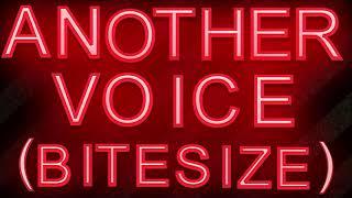 Socialism Through The Back Door: Another Voice Bitesize