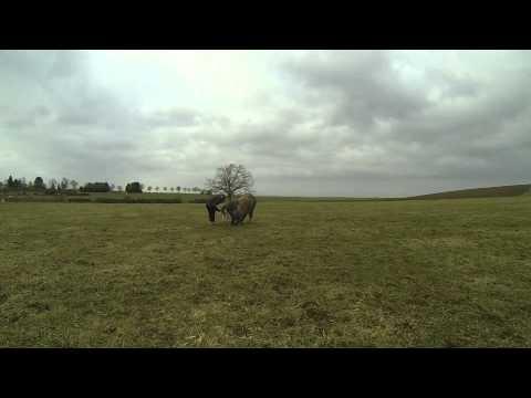 Ulan - Compte rendu des tours, Février 2015