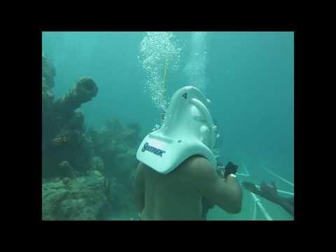 St. Maarten Sea Trek
