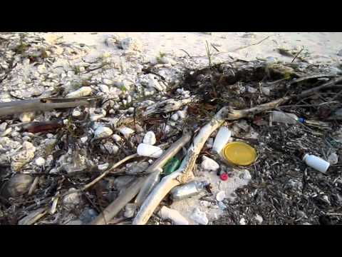 Video of a DIRTY BEACH ON THE PARADISE ISLAND OF LITTLE CAYMAN