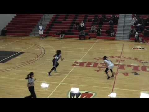 Shana Risby #5 Wayne County Community College District Lady Wildcats.
