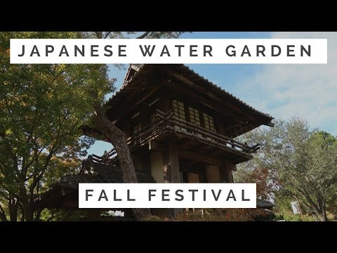 Japanese Event at the Japan Gardens
