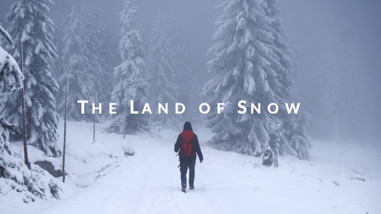 to the land of snow by ahtushi despande To the land of snow by ahtushi deshpande quotes - 1 life is a priceless gift, live it to the best of your ability so make sure you live your life to the fullest.