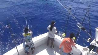 2017 Bermuda Big Game | Team Paradise One | Blue Marlin