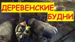 Деревенские будни / ПЕРЕДЕЛЫВАЮ СТОЙЛО / Ура снег!