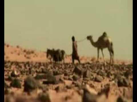 Encuentro Internacional de Solidaridad con el Sahara