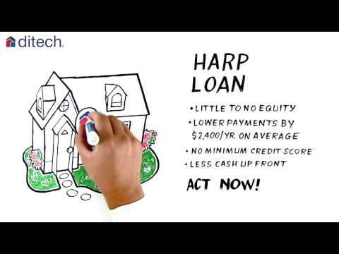 Everything You Need To Know About HARP