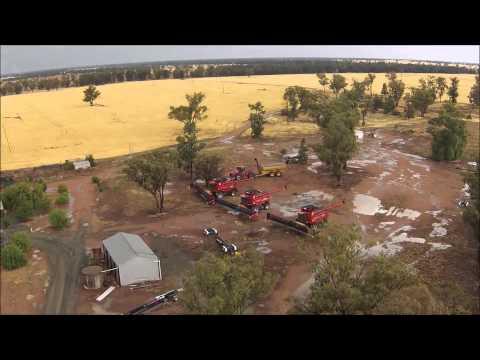 BFB Harvest 2014