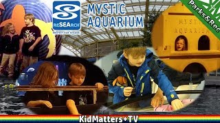 sea life! even more to see! a day tour of mystic aquarium. part 3
