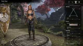 The Elder Scrolls Online - Video del gameplay - Un gioco spettacolare!!!