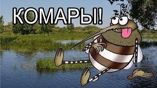 Не егерский способ защиты от комаров. Делаем своими руками приспособление для защиты от комаров.