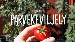 PARVEKEVILJELY | PIIIA ♥