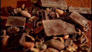 5 фактов о шоколаде