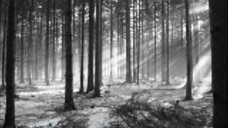 Dark Ambient Song  - Still Death Words