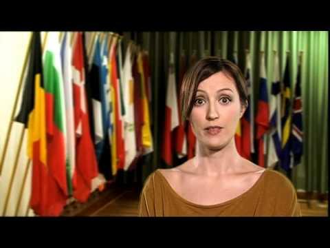 EU Constitution - a definition