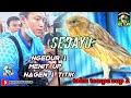 Kenari Sedayu Kerja Durasi menit Up Di Iven Tahu Tempe Cup   Mp3 - Mp4 Download
