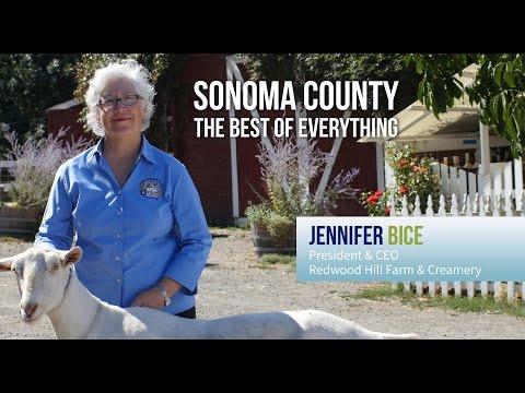 Sonoma County BEST for Business - Jennifer Bice