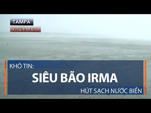 Khó tin: Siêu bão Irma hút sạch nước biển | VTC1