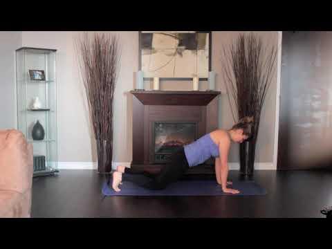 Life Meditation/ Yoga Standing Pose - Beginner's High Plank- Level 1