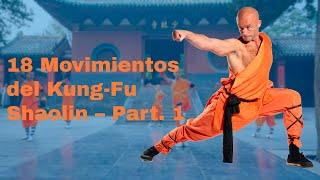 Los 18 movimientos básicos del Kung-Fu de Shaolín   Parte 1