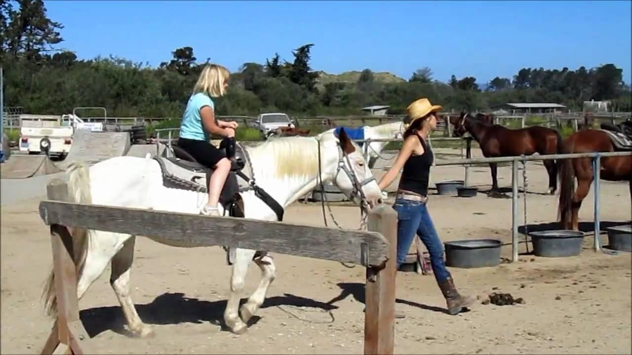 Pismo Beach Horse Ride Sand Dunes You