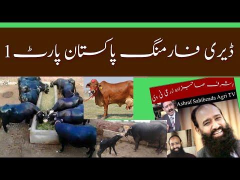 Dairy Farming Pakistan part 1 Introduction Dr. Ashraf Sahibzada