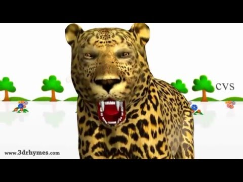 The way  pronounce the name of animals # English for kids