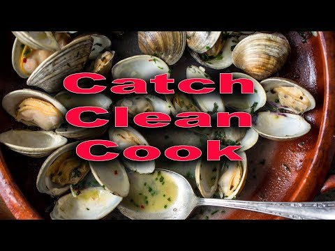 Clam {Catch Clean Cook} Steamed Pacific Clams with white wine Lemon Garlic Butter