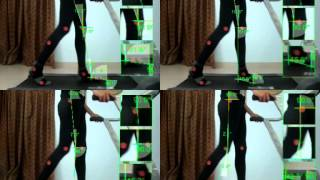 Stance Phases of Human GAIT
