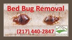 Bed Bug Removal-Palmyra Missouri