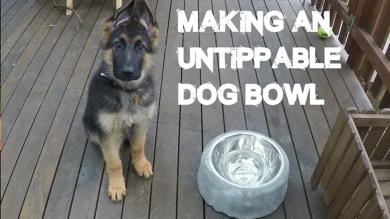 how to make an untippable dog bowl for under $10