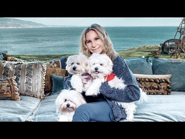 The actress-singer had her 14-year-old dog Samantha cloned twice before she died last year. (The Canadian Press)
