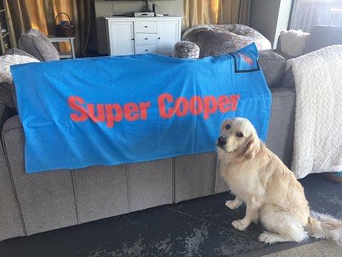 WE GOT A PO BOX - SEND COOPER & KODA MAIL! (Super Cooper Sunday #59)