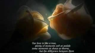 Dil Mein Sanam Ki soorat-love.flv