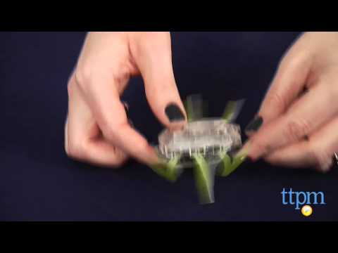 Hexbug Zombie Scarab from Innovation First