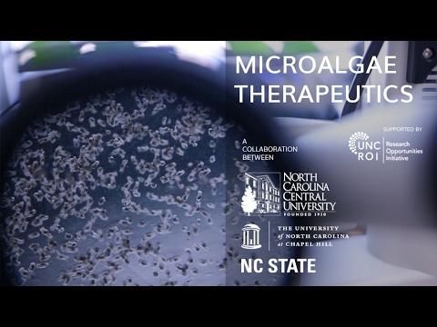 Microalgae Therapeutics