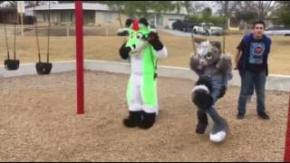 Furry Invasion of the Park