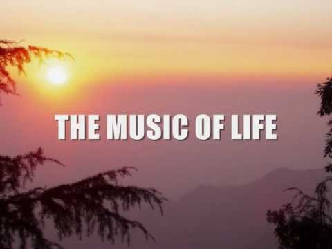Neil Sedaka - The Music Of My Life Lyrics