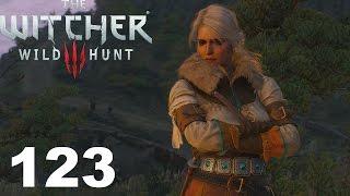 The Witcher 3 Wild Hunt Прохождение Серия 123 (Солнечный камень)