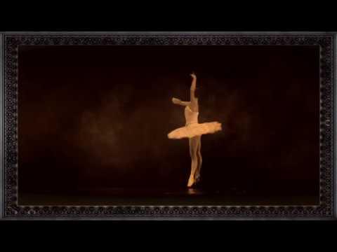 Lacrimosa ❀ Lass die Nacht nicht über mich fallen ❀   Fan Video Franky Syggy