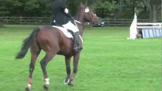 (HD) Glen Oro HT - Training Stadium - Heather McGeer and Twist of Fate