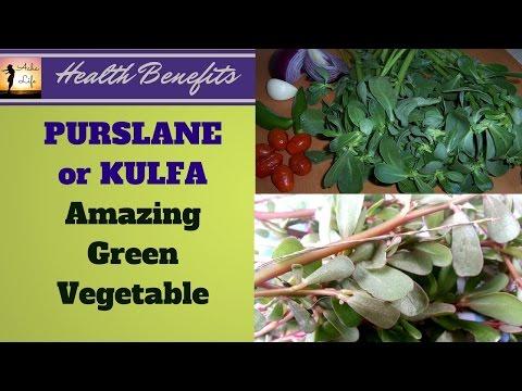 PURSLANE or KULFA amazing green vegetable ||  कुल्फा = हरी पत्तेदार सब्जी के औषधीय गुण
