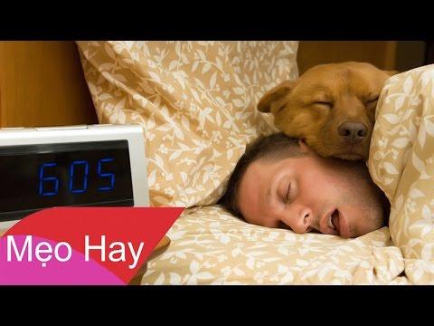 Biết Tuốt: 10 Bí Quyết Để Rơi Vào Giấc Ngủ Sau 30s