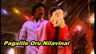 Pagalile Oru Nilavinai Song HD - Ninaive Oru Sangeetham Movie