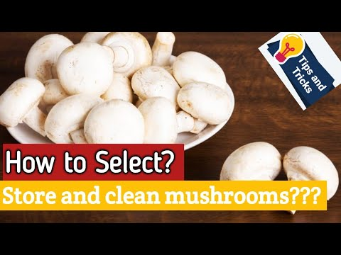 How to clean mushroom in Tamil||How to select mushrooms||Cooking tips in Tamil