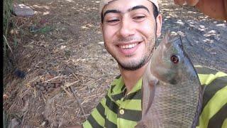 صيد السمك بالتوت ..أزيد من ١٠ كيلو بلطي